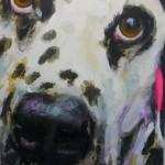 Dalmatiner Cora, 80x60cm Acryl und Lack 2014 (2)h
