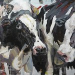 Kühe schwarz-braun klein